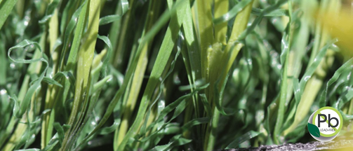 Coronado S-Blade 53 Artificial Grass Coronado Best Turf, (619) 435-5296