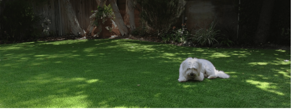 Sitemap - Coronado Best Turf, Artificial Grass Landscape, San Diego